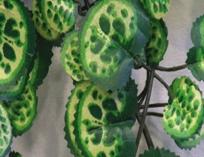 Искуственные растения для террариума