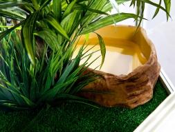 Базовый комплект для содержания игуаны.PJ 746