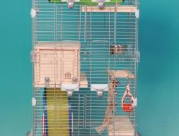 Клетка модель PJ361