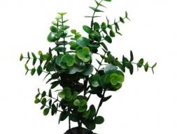 Искусственное растение, Кардамин, 30 см.