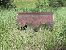 Домик для дачного ежика