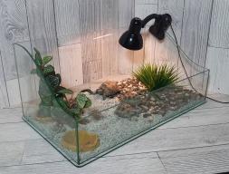 Базовый комплект для черепахи