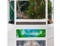 Базовый комплект для содержания игуаны.PJ 734