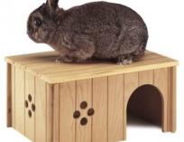 Домик деревянный для домашних животных